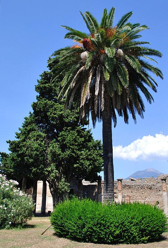 Помпеи. Pompeii. 4