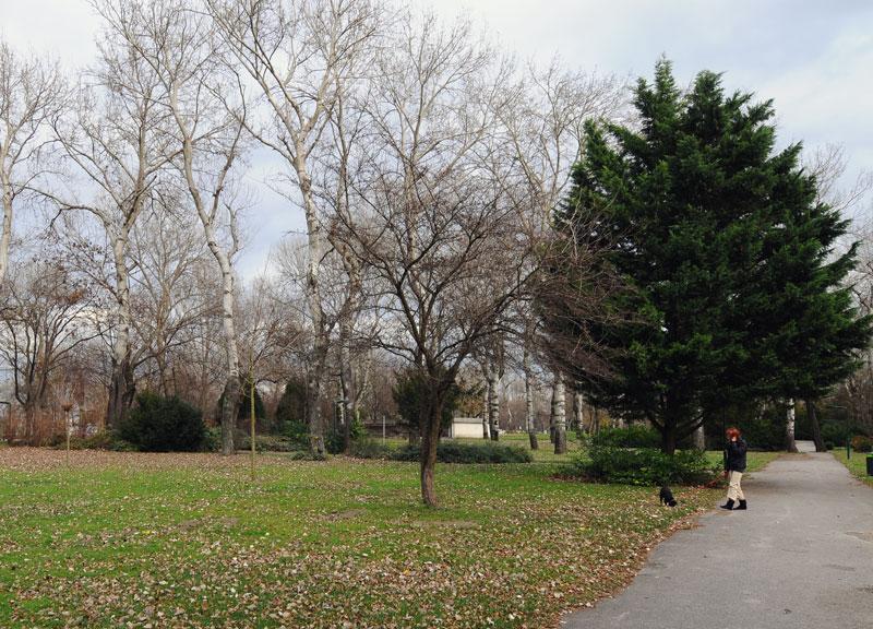 Вена. Парк перед Донау Турм. 2
