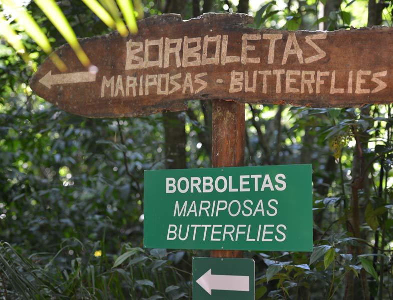 Парк Птиц. Игуасу. Бразилия. Bird Park. Iguaсu. Brasil. 35