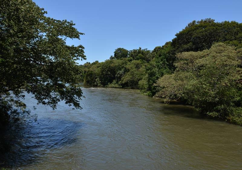 Водопады Игуасу. Аргентина. Iguasu Waterfall. Argentina. 55