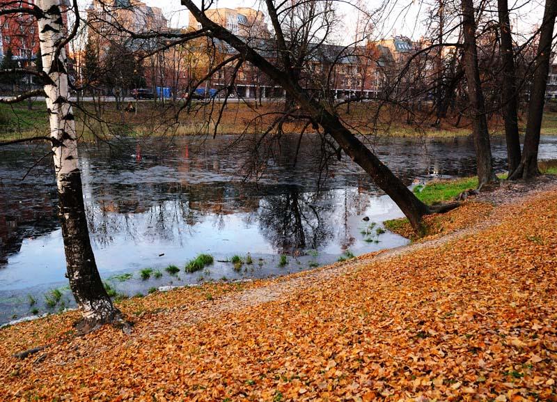 Питер. Осенний пруд. 1.