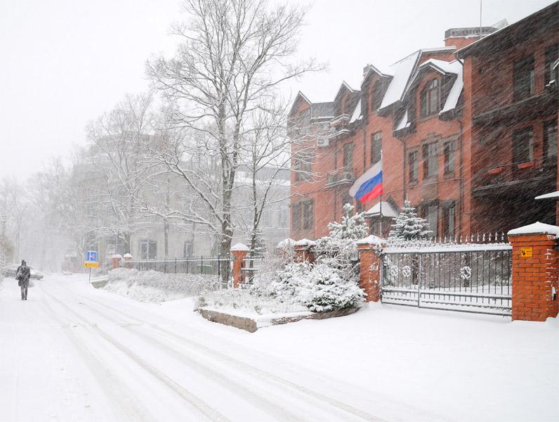 Питер. Снег. 10.11.2009.