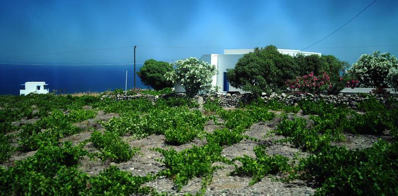 Санторини. Ия - Фира. Santorini. Oia - Fira. 185