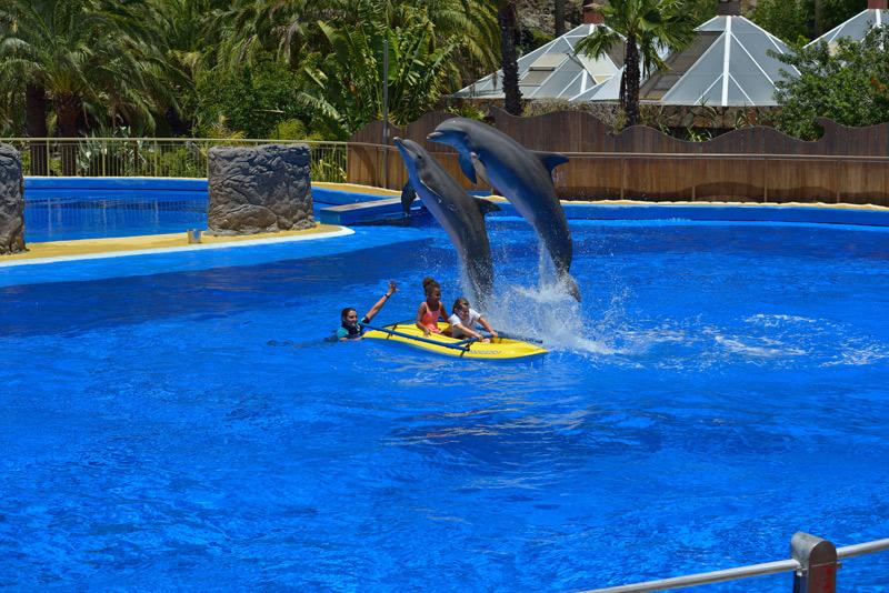 Дельфины и дети.