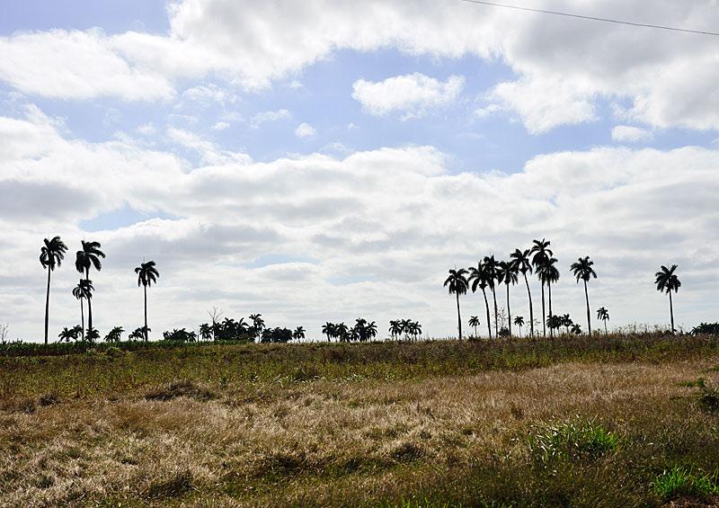 Варадеро - Сагуа-Ла-Гранде - Ремедиос - Санта-Клара. 55