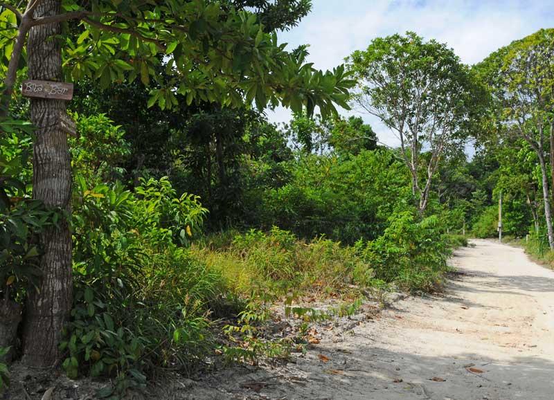 Ко Липе. Прогулка по острову. Ko Lipe. 221
