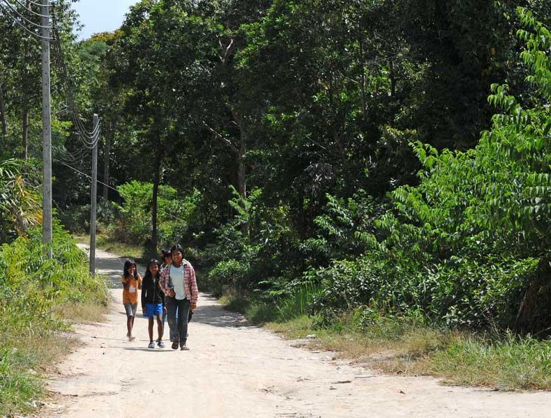 Ко Липе. Прогулка по острову. Ko Lipe. 226