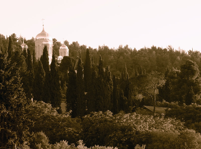 Иерусалим. Горненский монастырь.