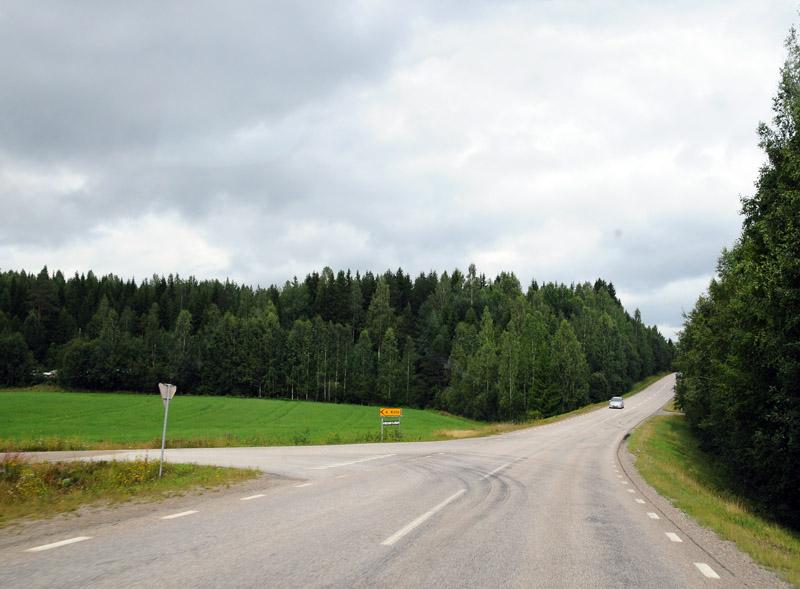 Стокгольм - Эстерсунд. (c)Smyslik. 36