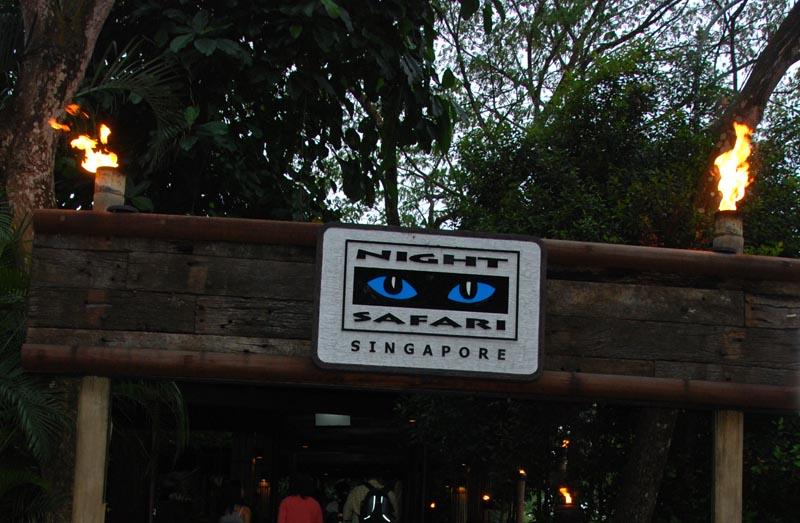Сингапур. Зоопарк. Singapore. Night Safari.