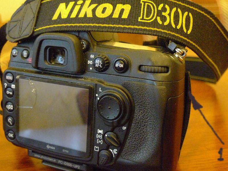 Nikon D300. 1